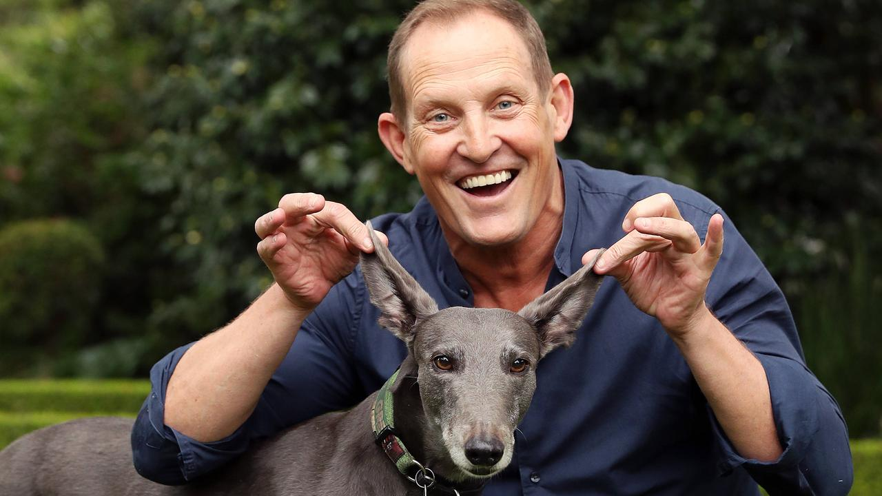 Dancing With the Stars judge Todd McKenney is Greyhounds As Pets NSW Adoption Day ambassador